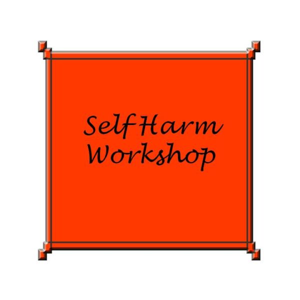 Self Harm Workshop